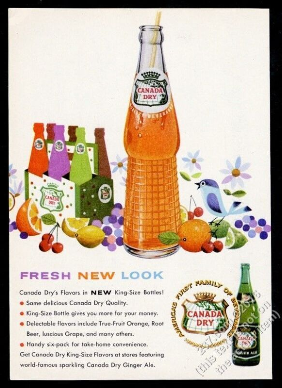 1959 Canada Dry orange soda new king-size bottle & bluebird art vintage print ad