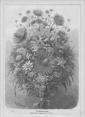 Alpenblumenstrauss Blumenstrauss HOLZSTICH von 1881