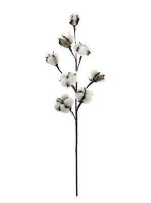 Cotton Stems 3 Stems/Pack. 8 Cotton Buds/Stem  22� Tall Farmhouse Rustic Floral