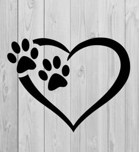 Dog Walker/Pet Care Provider Available