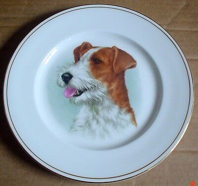 Briden Fine Bone China Rough Coated Jack Russell Terrier Collectors Plate for sale  Swaffham