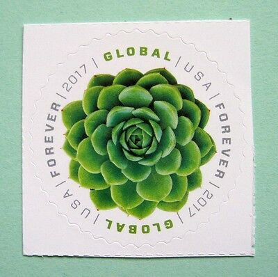 Sc   5198   Global Forever Stamp   Green Succulent Issue  Bf19