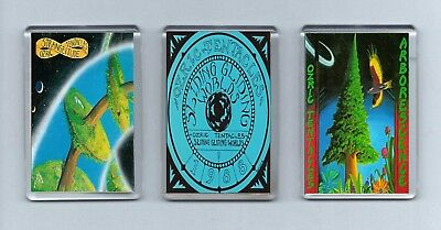 Magnets x 3 : OZRIC TENTACLES Strangeitude Sliding Gliding Worlds Arborescence
