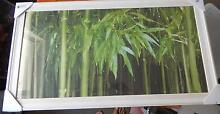 Large Bamboo Print - White Timber Frame Seaford Meadows Morphett Vale Area Preview