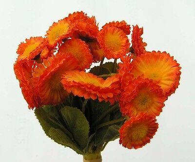 Trendy Floristen Bellisbündel (Gänseblümchen)19 cm orange zum Sonderpreis x 4444