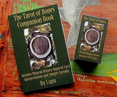The Tarot of Bones Deck and Book Set - sold and SIGNED by Lupa