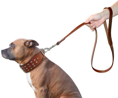 Best Thick Genuine Leather Dog Walking Leash for Medium Large Dogs Pitbull (Best Leash For Pitbull)