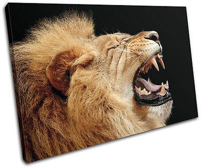 (Lion Roar Wild Animals SINGLE CANVAS WALL ART Picture Print VA)