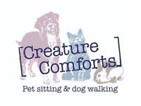 Dog Walker/ Pet sitter-Inverkeithing