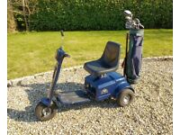 TRIO GOLF BUGGY by Patterson Products with brand new gel batteries