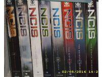 NCIS Complete seasons of 1-8 DVD's