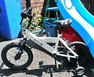 "Children's 14"" Pirate Bike"