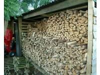 Seasoned quality logs