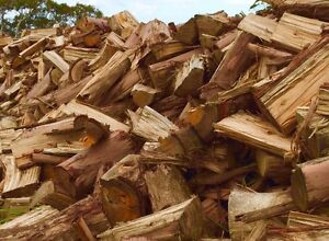 "Firewood ""GUM"" EcoFriendly! Delivering to most suburbs. Marion Marion Area Preview"