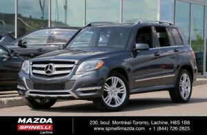2015 Mercedes-Benz GLK-Class GLK 250 BlueTec PANO GPS 360 CAMERA