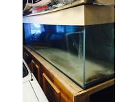 8ft Aquarium / Fish Tank