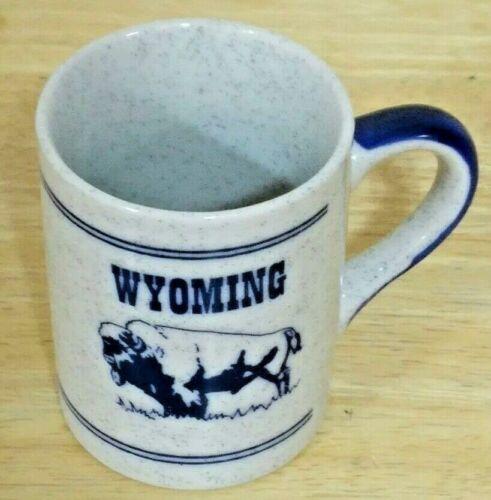 Wyoming Bison & Bronco Double Sided Coffee Mug Gray w Blue Specks Cowboy Buffalo