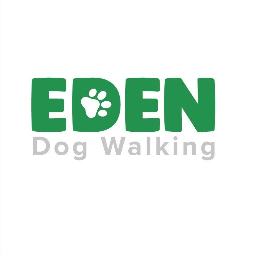 Local to Didsbury, a friendly and dedicated dog walking service