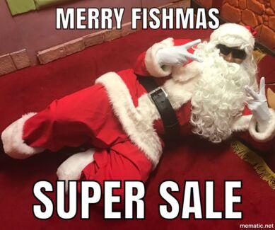 Brisbane Aquarium Fish For Sale