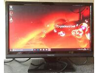 Packard Bell Viseo 190wa 19inch Widescreen LCD TFT VGA 16:9 computer Screen Monitor