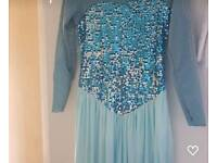 Elsa Dressing up dress (adults)
