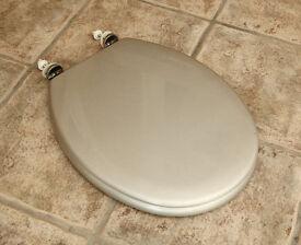 Silver sparkly toilet seat