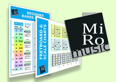 A5 Barre Chord Chart & Basic Guitar Scales Card for all experiences Basic Guitar Chords Chart