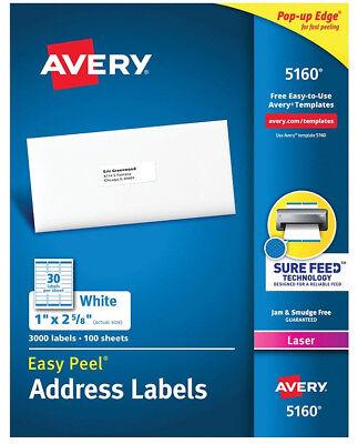 Avery 516059608160 Address Labels 30 Labelssheet 9001500 Labels