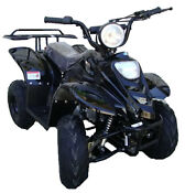 Youth 4 Wheeler ATV