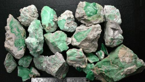 1lb Variscite Rough, Edison Bird Mine, Lucin, Utah