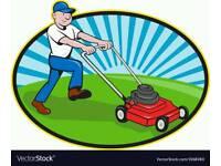 Gardener and landscaping
