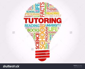 Expert qualified primary tutor in maths and english