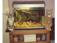 80 Litre Fish Tank
