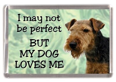 "Welsh Terrier Dog Fridge Magnet ""I may not be perfect BUT....."" by Starprint"