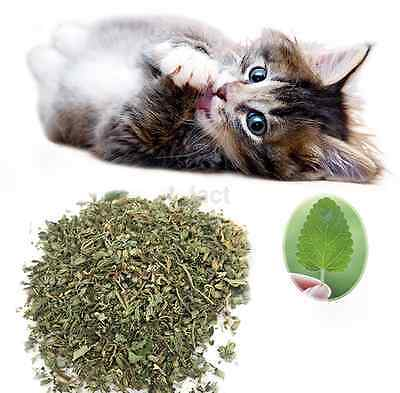 10g Organic Dried Catnip Nepeta cataria Leaf & Flower Herb Choose Bulk CA