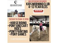 Horse/Pony lessons (Meadowvale equestrian centre Magherafelt