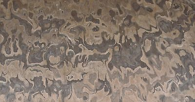Walnut Burl Composite Wood Veneer 24 X 48 With Paper Backer 140th Thickness
