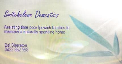 Swithclean Domestics