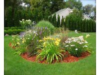 Love garden design & maintenance ltd
