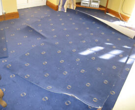 Blue/gold carpet remnant