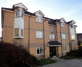 4 bedroom flat available in Roath