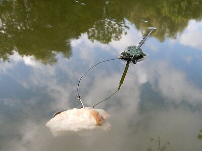 Fishing float for carp that wards off birds. surface bait presenter.