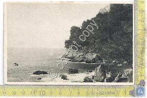Cartolina-Postcard-Toulon-Pin-de-Gale