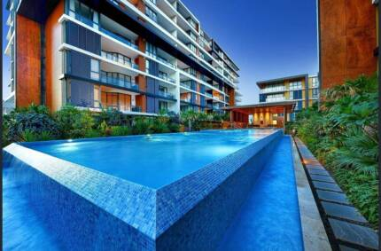 1 Bed Study For Rent Top Ryde Apartment Property Gumtree Australia Area 1180659241