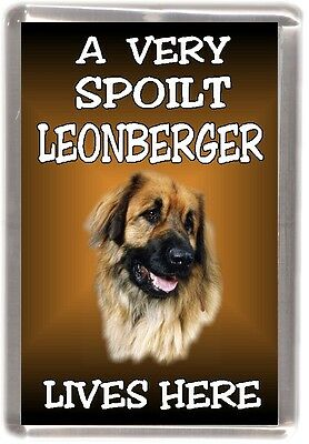 "Leonberger Dog Fridge Magnet  ""A VERY SPOILT LEONBERGER LIVES HERE"""