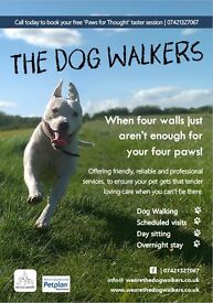 The Dog Walkers: friendly & professional walking and pet service. Burton / Stretton / Beam Hill