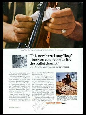 1964 Winchester 70 rifle David Ommanney Africa photo vintage print ad