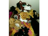 Large box of soft toys