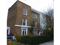 Double room in shared house with garden - De Beauvoir, N1