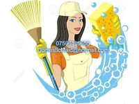 5* Professional Cleaning and Ironing Company